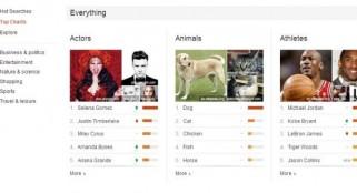Google 'Top Charts' reveal hot search topics