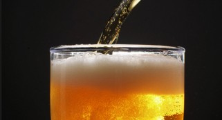 Beer's distinct smell comes from evolutionary relationship between fruit flies and yeast
