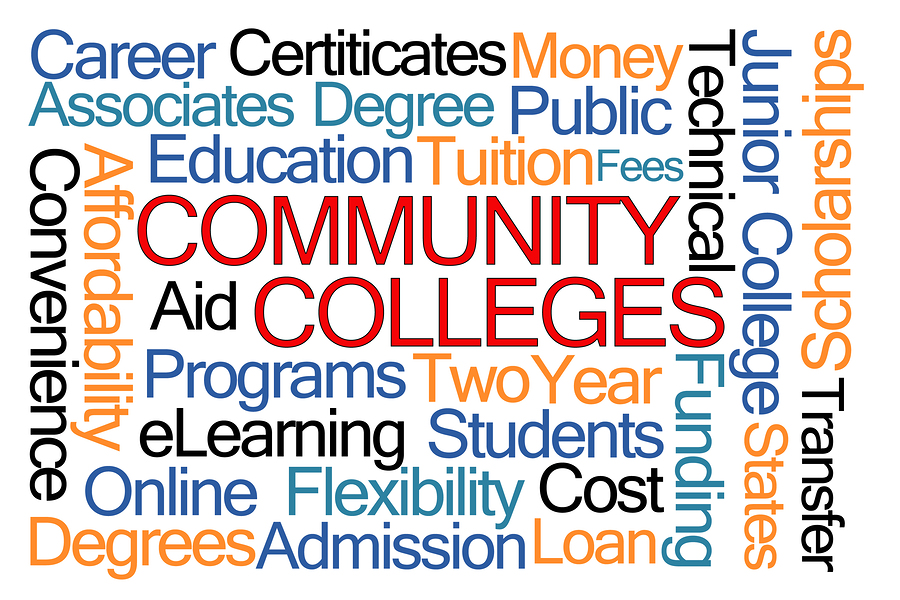 Community Colleges:  Intellectual joke or the future of education