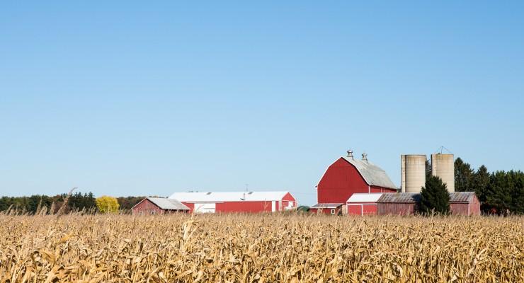 Family Farm Scene In The Fall