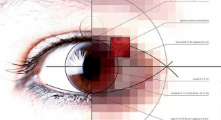 Human night vision? Just an eye injection away
