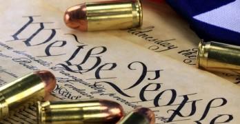 finding-common-ground-effective-strategies-to-address-gun-violence-19091