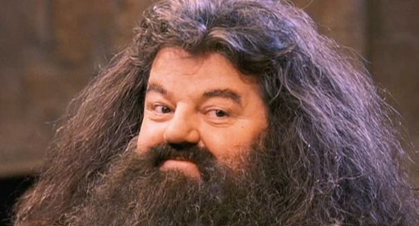 Hagrid from Harry Potter is hospitalized