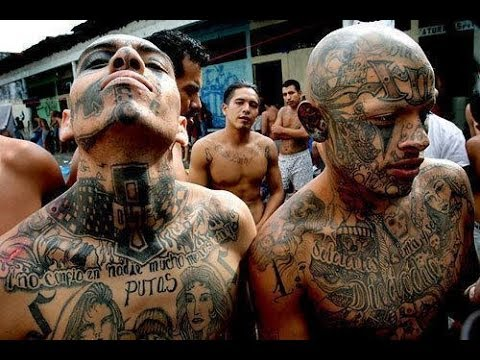 Trump Didn't Dehumanize MS-13 Gang Members, They Did It to Themselves