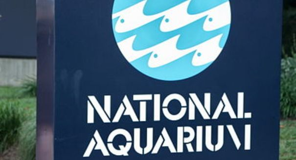 National Aquarium set to close its Washington branch; 1500 animals to be moved