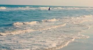 Plankton may stir the seas