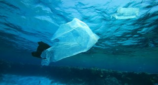 Study shows almost 270,000 tons of plastic floating in oceans