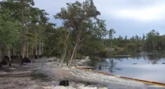 Sudden unexplained sinkholes in Florida threaten to swallow homes