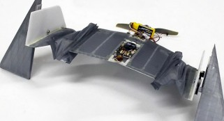 Watch the newly developed 'vampire bat' DALER drone walk and fly